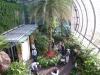 Butterfly Garden in Singapore